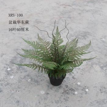 Simulation of leaves plants fern leaves pots East fern leaves 桫 椤 leaves leave tree museum works wholesale