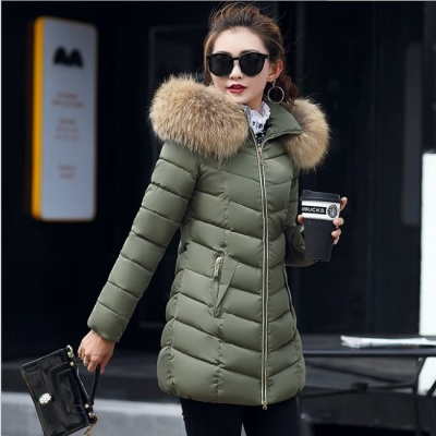 Women's winter south Korean edition of the new cotton clothes women's long hair jacket, long hair collar down