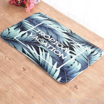 Carpet floor mat.