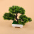 Chinese style multi - shaped welcome pine simulation flower decoration potted
