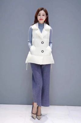 Winter new women's cotton-padded waistcoat, European and Korean fashion with a button - down style cotton-padded dress