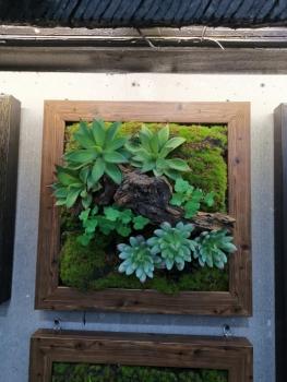 仿真植物墻 假豆花造景 草皮 仿真花背景墻花墻 ,高仿真植物畫