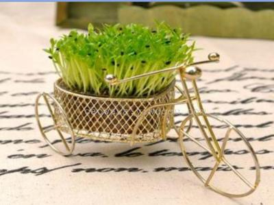 Love bike: miniature potted wholesale grass doll heart - shaped car planting crafts.