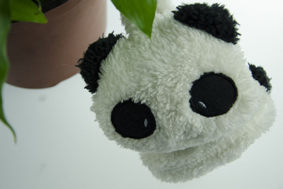 Nuan Er Duo  factory direct a cartoon Panda earmuffs