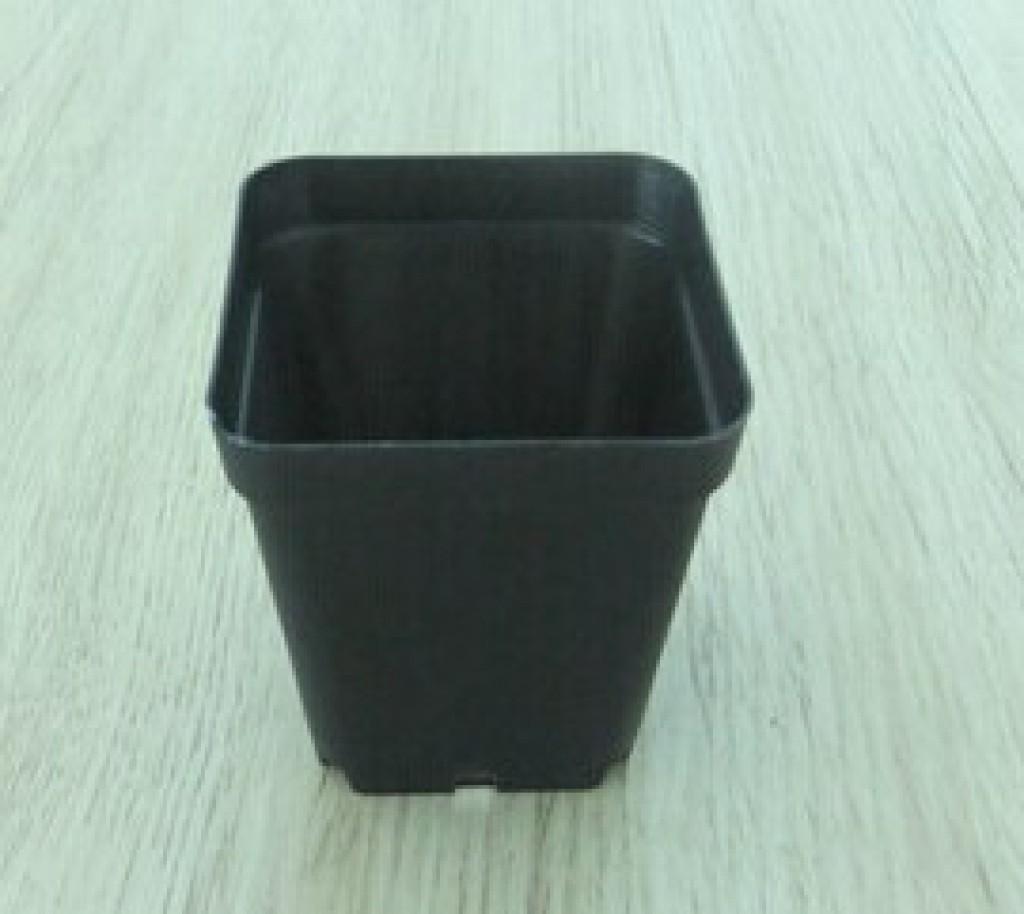 Mini black caliber 5.5cm meat breeding small square plastic flower pots & Supply Mini black caliber 5.5cm meat breeding small square plastic ...