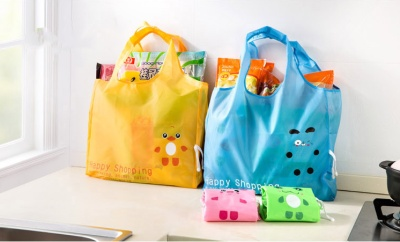 Special bag for shopping bag