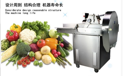 Multipurpose chopping machine manufacturers selling