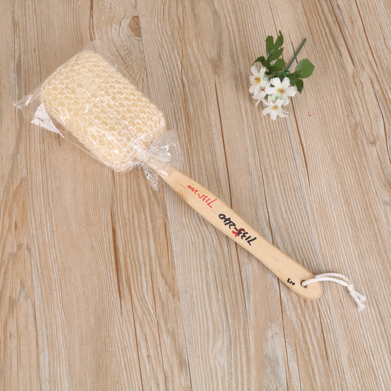 Bathroom Brush Long Handle Rub Back
