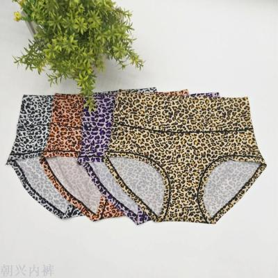 Women's triangle panties leopard print on the stomach and hips soft and comfortable
