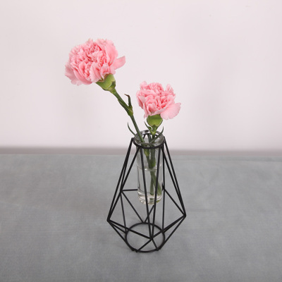 Contracted Nordic wind geometry glass water culture dried flower false flower tieyi vase sitting room table decoration placement set