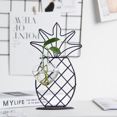 Nordic creative simple iron art transparent glass hydroponic vase decoration living room dry flower arrangement flower home decoration